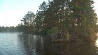 Early Morning Canoe Trip